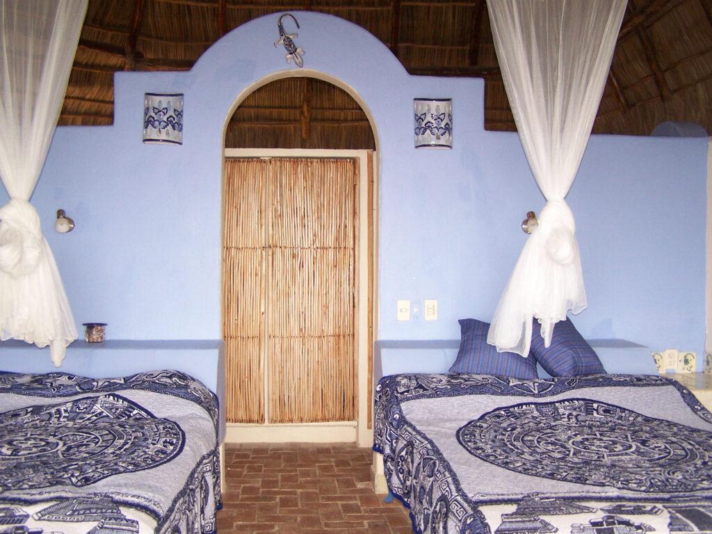 iguana both beds
